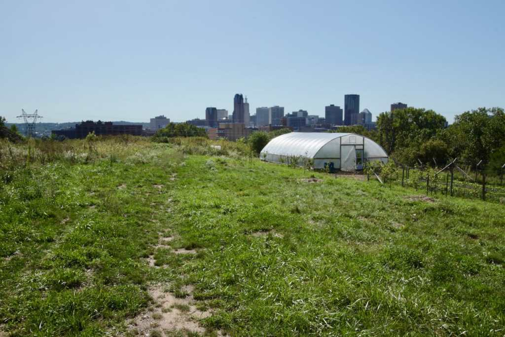 The high tunnel and garden are operated by Urban Roots, an East Side nonprofit that teaches young people gardening, conservation and cooking skills. The 48 foot by 30 foot high tunnel and adjoining garden opened in 2018.