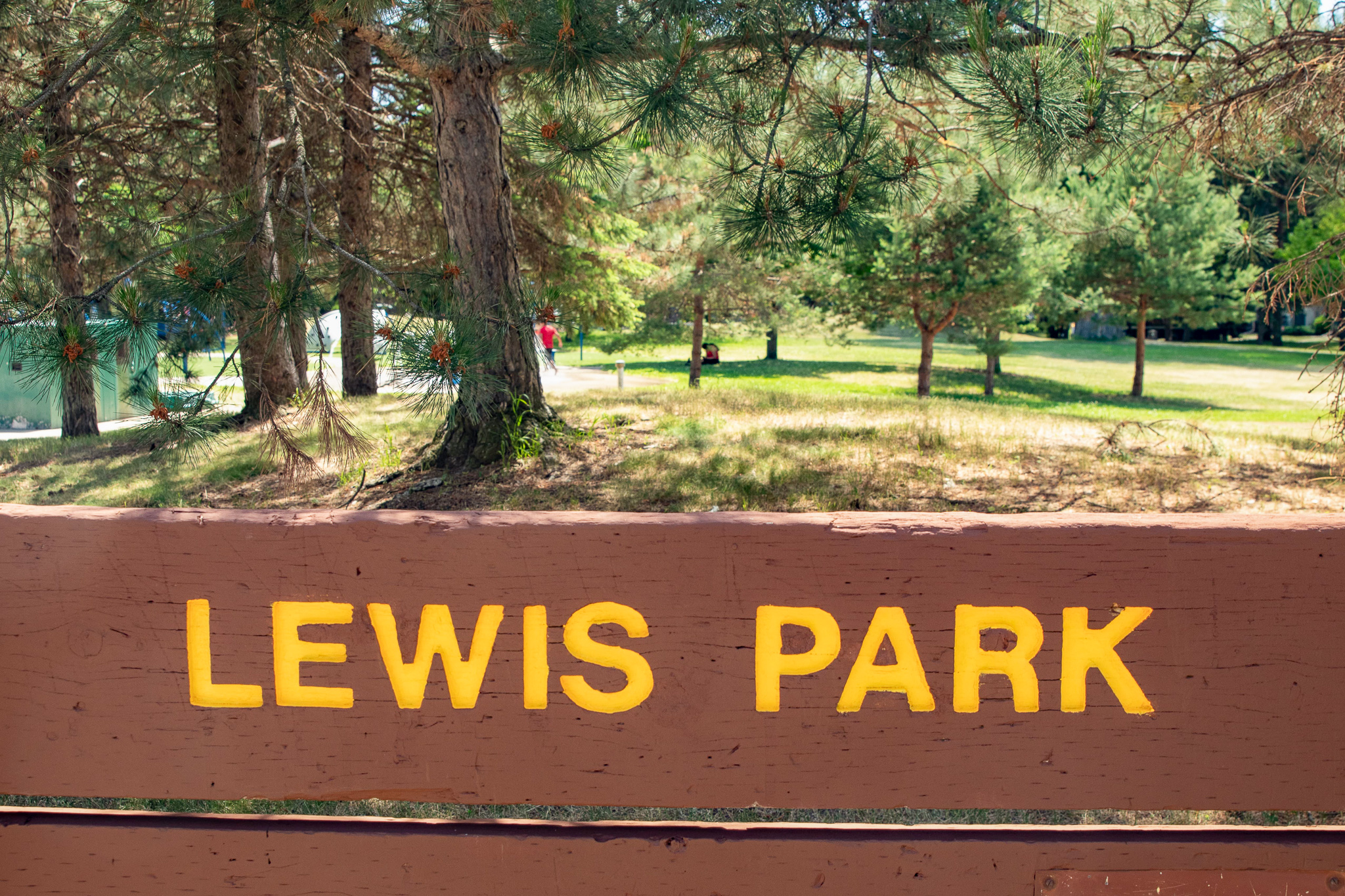 A large sign still identifies this as Lewis Park though its name was changed to honor civil rights figure Roy Wilkins, who grew up nearby. The Saint Paul City Council voted in March 2021 to rename the park.